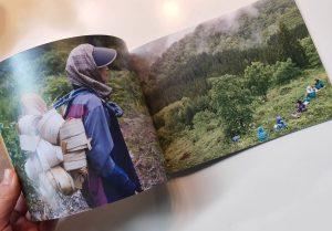 「山の織 雪の色」冊子
